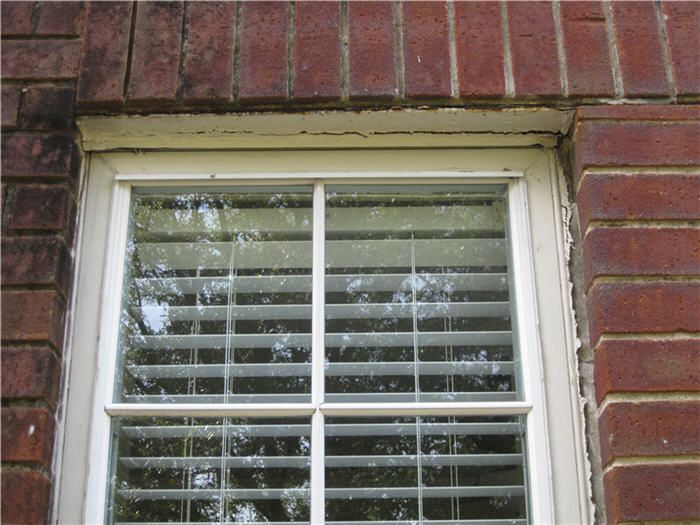 Rotten wood around window-img_1639.jpg
