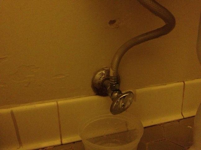 Toilet Leak-img_1657.jpg