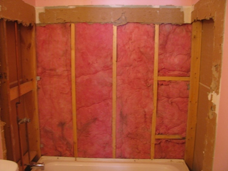 need some help with remodel of bathroom-img_1700.jpg