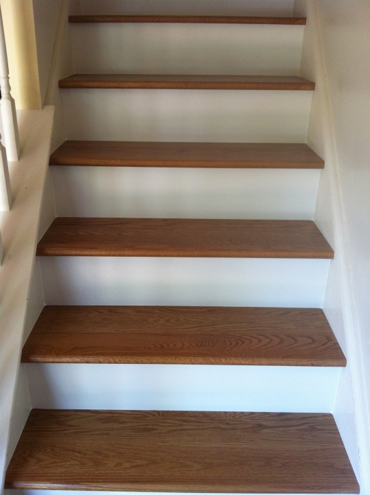 Wonderful How To Finish Basement Stairs Img_1709