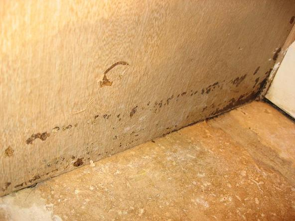How To Repair Water Damaged Particle Board Cabinets Mycoffeepot Org