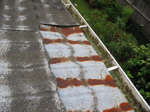Country Manor Shake metal roofing-img_1794-resized.jpg