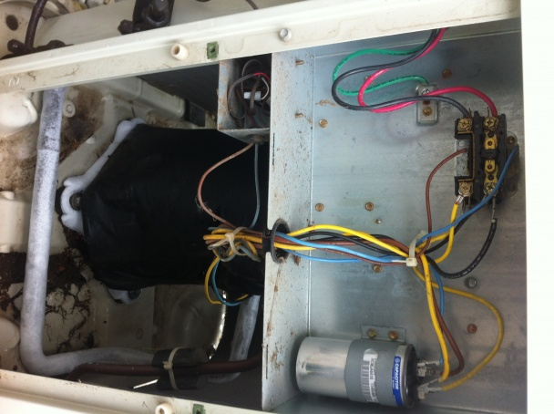 71767d1369864986 ac unit bryant 594d replacing 1 pole 2 pole contactor please help wiring img_1809 1 ac unit bryant 594d replacing 1 pole with 2 pole contactor please 2 pole contactor wiring at readyjetset.co