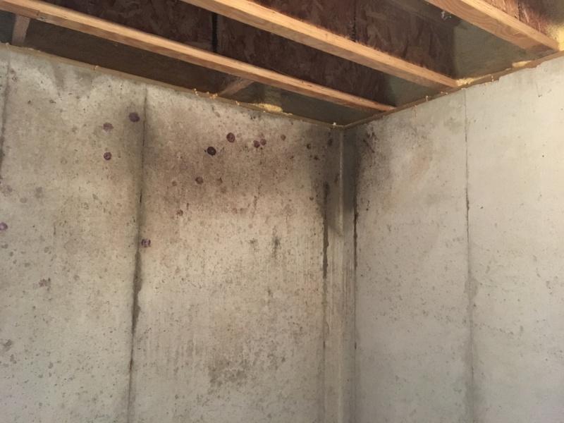 Mold/wetting on basement walls, condensation?-img_1840-1-.jpg