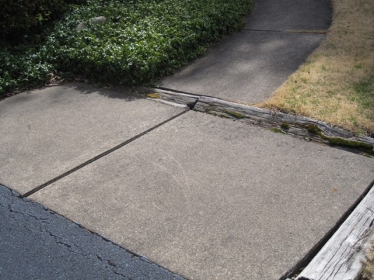 Need suggestions -- walkway improvement project-img_1886-small.jpg