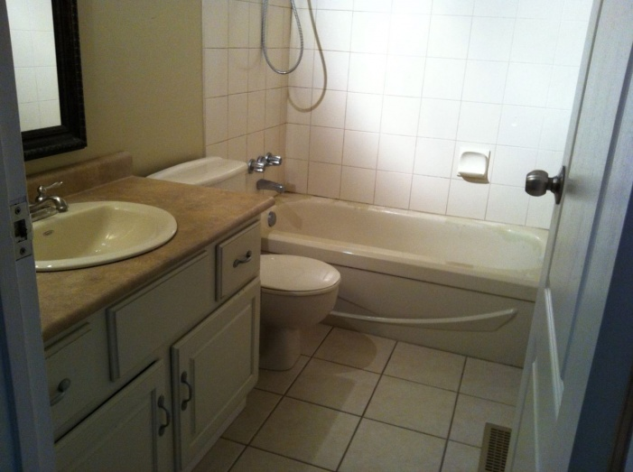 Complete re-do of my '80 main bath - let the demo begin-img_1901.jpg