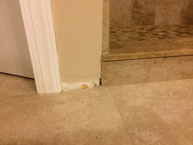 Adhesive for small piece of tile?-img_1945.jpg