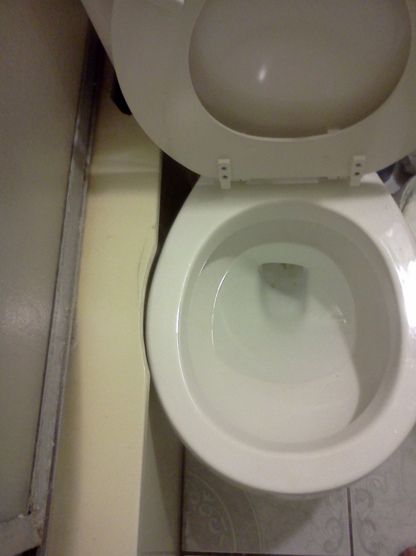 How easy is it to find replacement toilet of same profile/size-img_20131026_154052.jpg