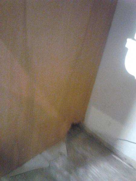 Rusty stubborn garbage disposal-img_20140311_193224.jpg