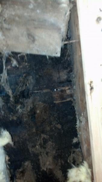 retrofit insulation-img_20141002_221552_607.jpg