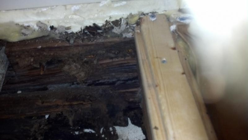 retrofit insulation-img_20141002_221628_731.jpg