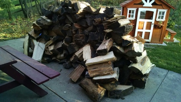 How Do Suburban Dwellers Store Firewood?-img_20141101_161432409.jpg