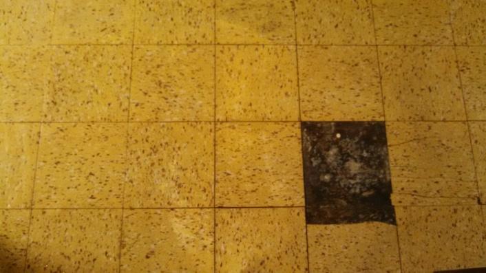 Cork Tiles over existing(absbestos) floor?-img_20141110_080109_872.jpg