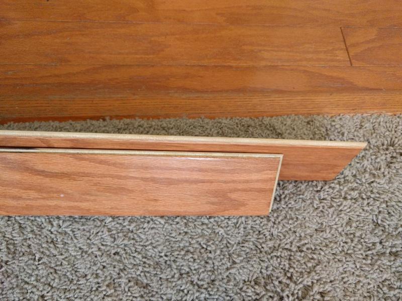 Tile flooring color or go with wood flooring?-img_20161008_132202.jpg