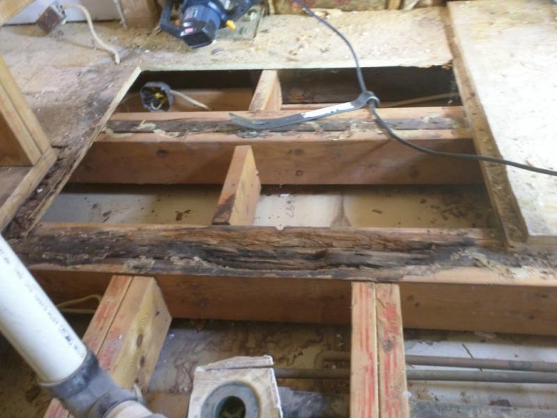 Floor Joist Water Damage Already Sistered Building