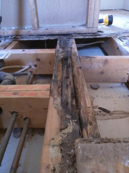 Floor Joist Water Damage Already Sistered Building