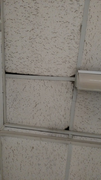 Asbestos Ceiling Tiles General Diy Discussions