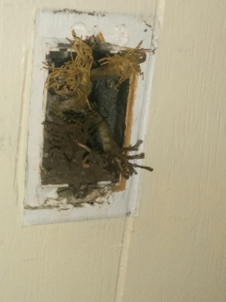 Light Switch Replacement In An Old House - Electrical - DIY Chatroom