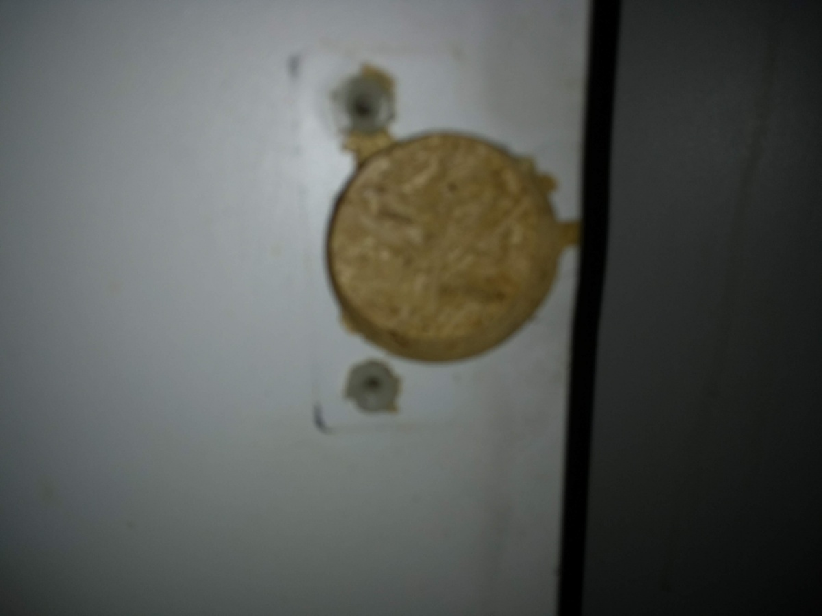 removing plastic anchor from wood (installing Blum hinge to replace old one)-img_20180712_144541867.jpg