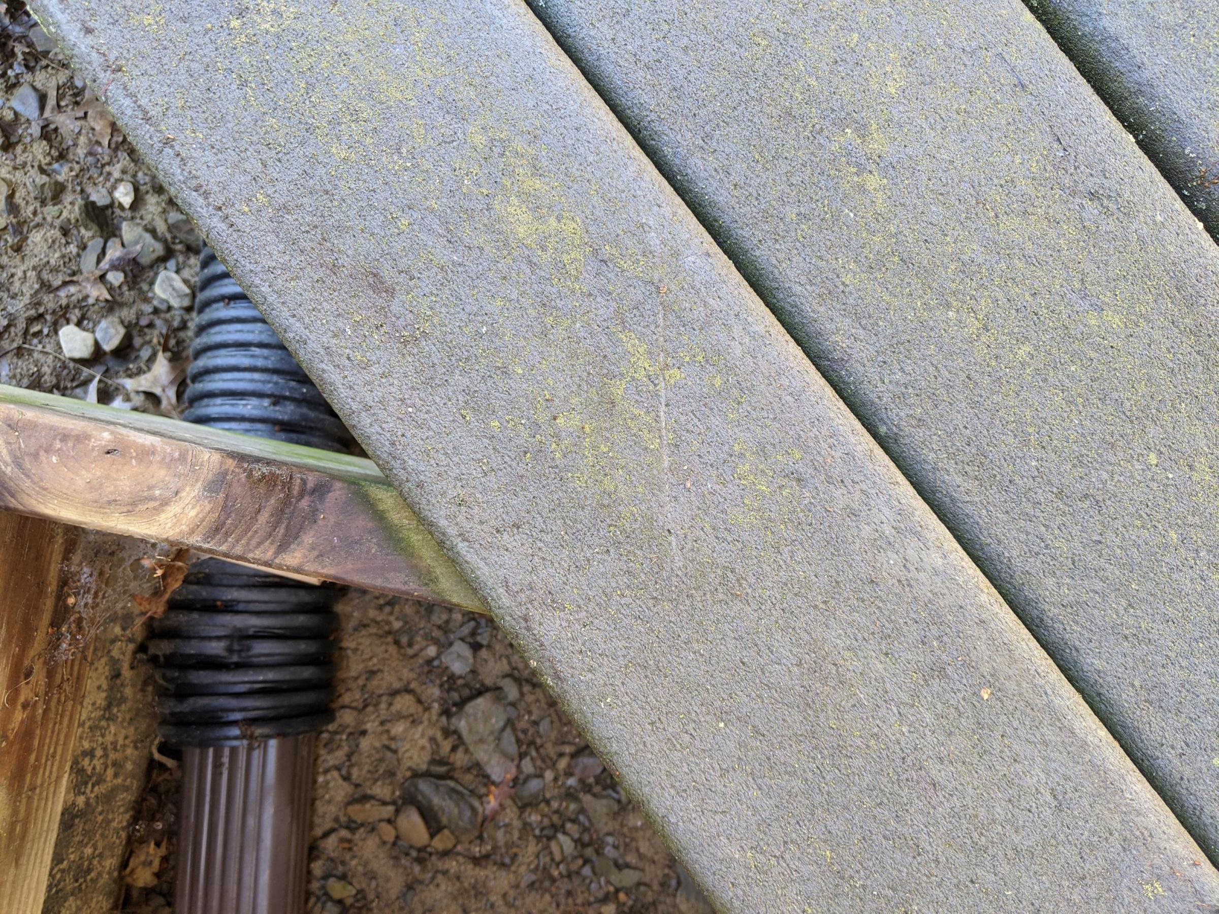 Front porch rebuild-img_20200702_101318_1593699302285.jpg