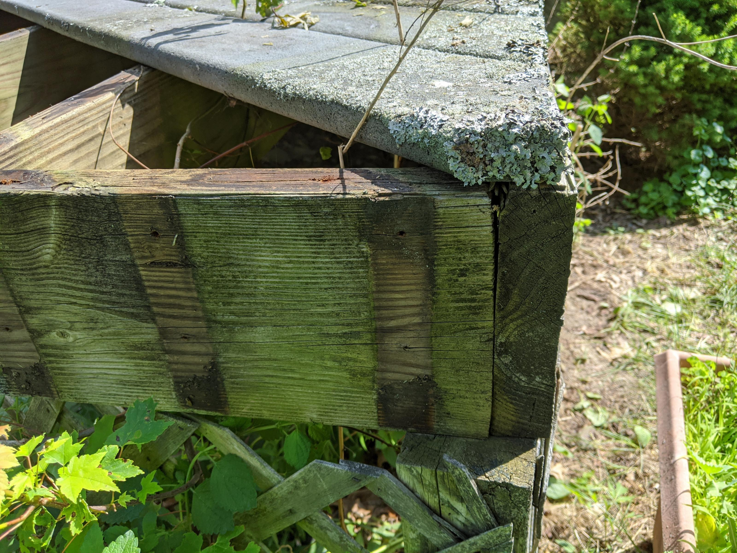 Front porch rebuild-img_20200703_105148_1593819164578.jpg