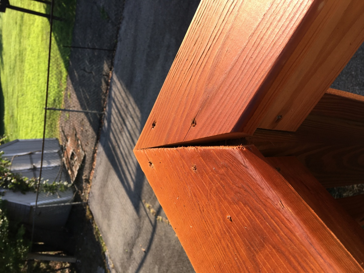 Eight month old deck issues-img_2021.jpg
