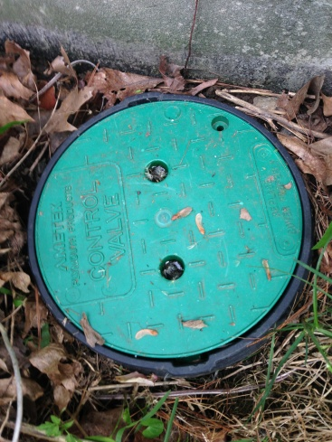 Help finding and testing the irrigation system-img_2058.jpg
