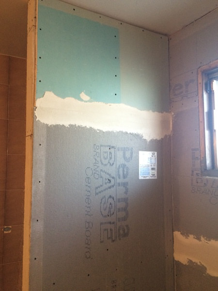 Advice on Bathroom Remodel-img_2069.jpg
