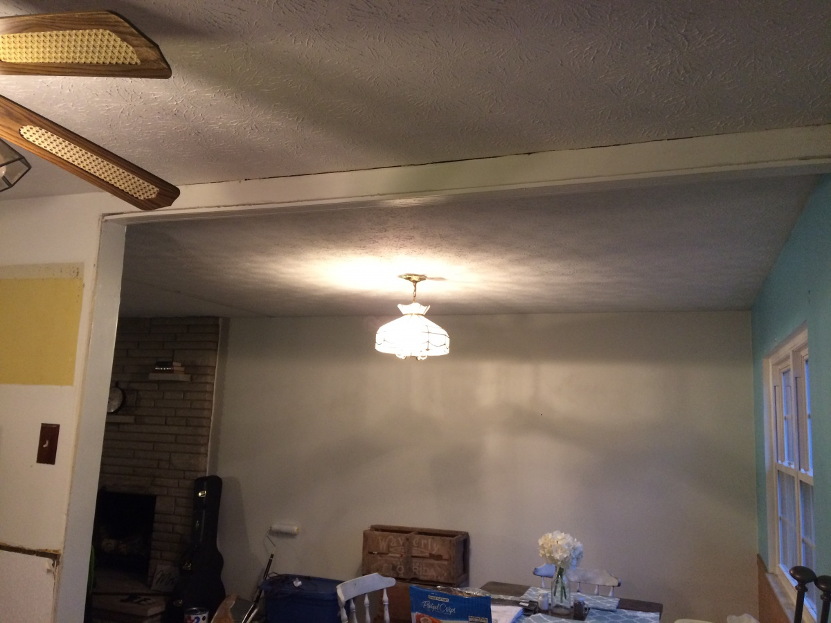 Removing a Wall/Fixing Ceiling Crack-img_2082.jpg