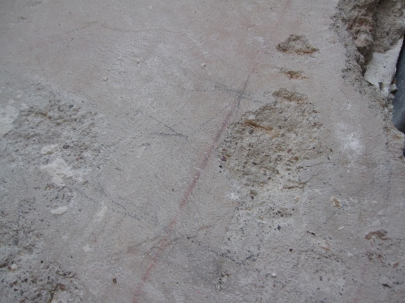 Building a new interior wall on cement floor-img_2109.jpg