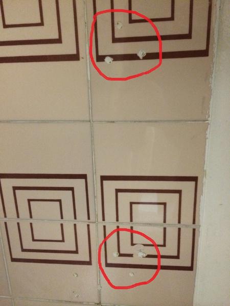 Need help installing a grab bars on already established holes-img_2174.jpg
