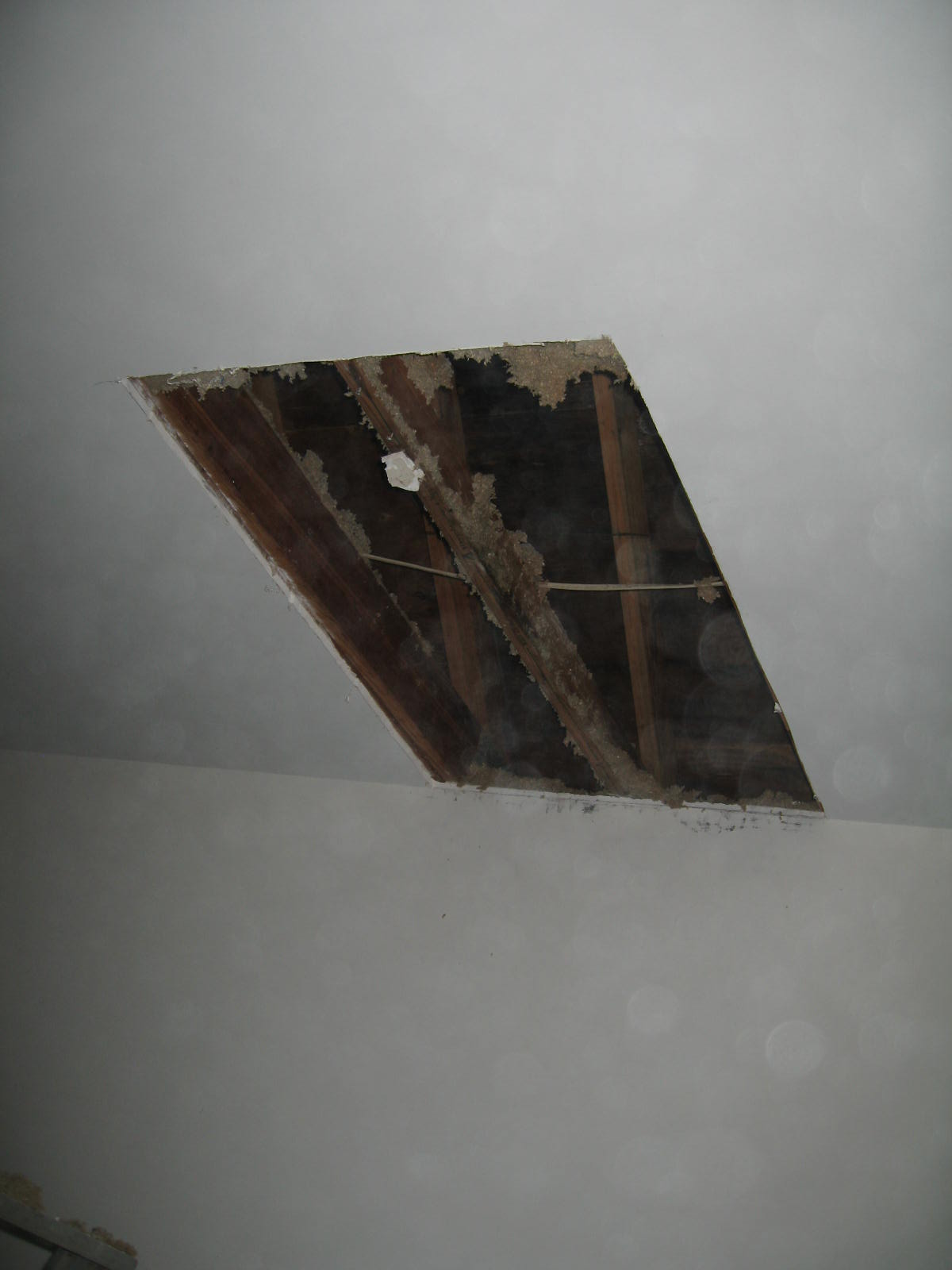 Is abestos present normally in homes built around 1979 to 1981? Pics included-img_2249.jpg