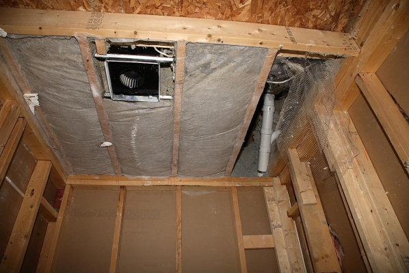 Identification and cutting of roof truss system for skylights?-img_2321.jpg
