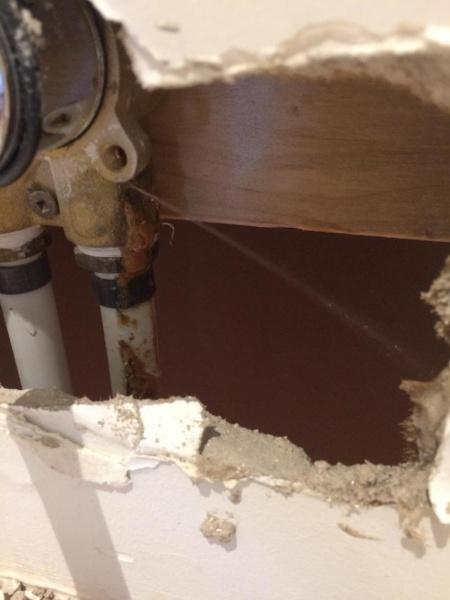 Plumbing failure-img_2396_1485042611631.jpg