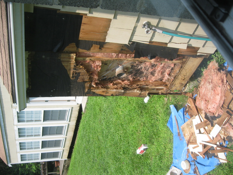 My house's previous owner - DIY horror stories-img_2687.jpg
