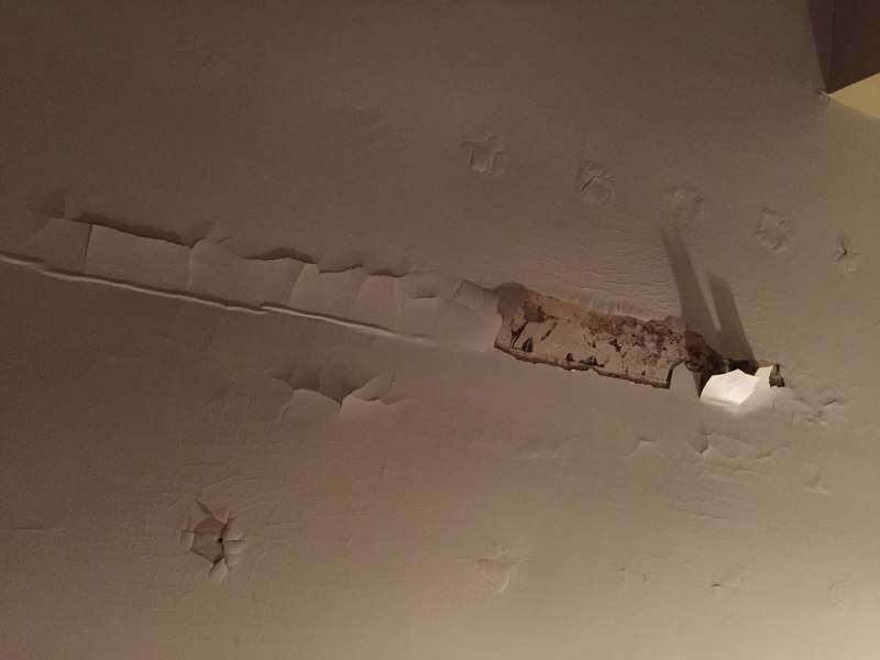 Peeling And Leaking Ceiling Painting DIY Chatroom Home