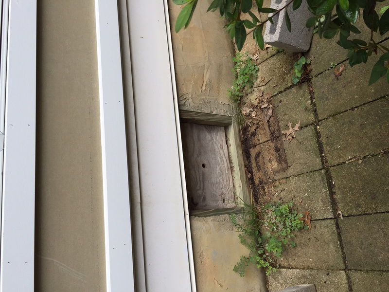 Window Well for Crawl Space Entrance?-img_2882.jpg