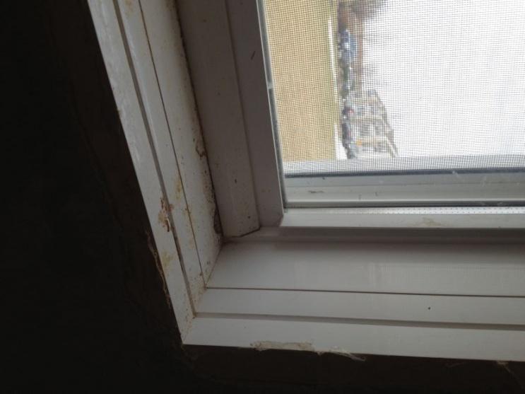 Basement Window Leaking Underneath-img_2957.jpg