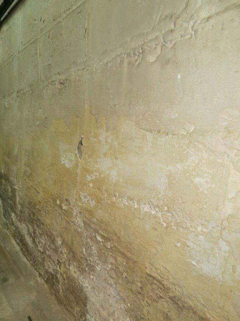 Need suggestions for fixing, cleaning & water-proofing the basement walls-img_3040.jpg