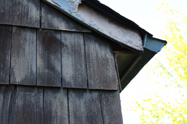 Wood shingle siding-img_3084.jpg