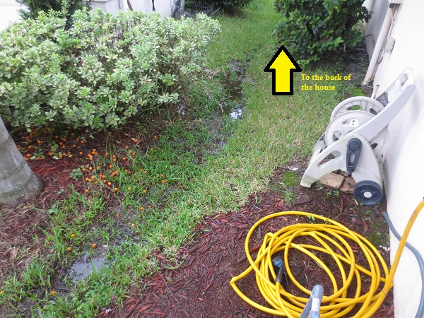 Drainage Issue Help- French Drain or Solid?-img_3141.jpg