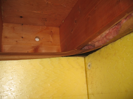 Sill plate and rim joist question-img_3141_small.jpg