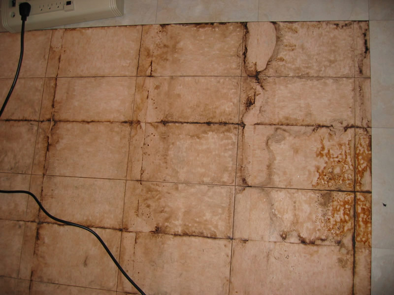 Repair or replace sheetrock?-img_3144_1.jpg