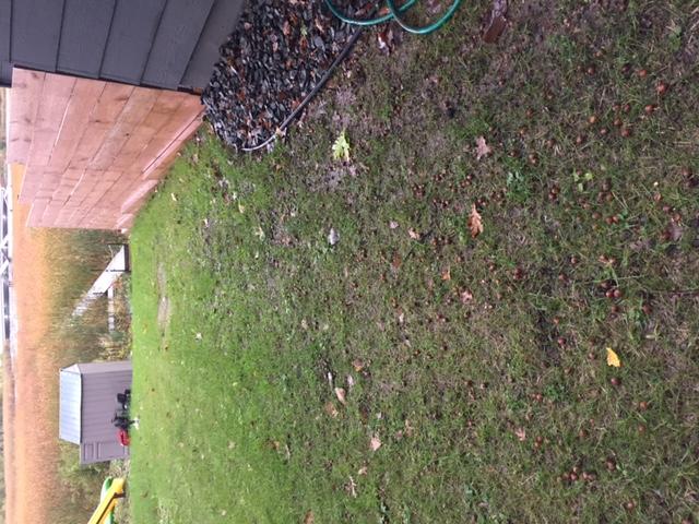 Do I need a drainage tile along this wall & house?-img_3258.jpg