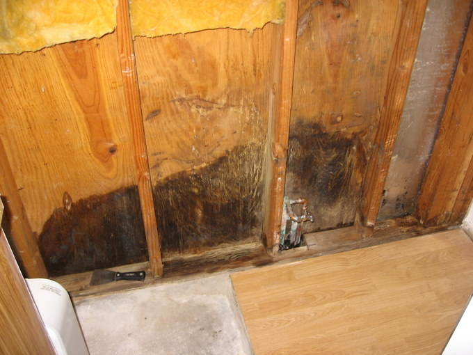 Water damage in exterior wall-img_3288-3.jpg