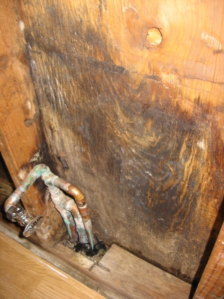 Water damage in exterior wall-img_3289-2.jpg