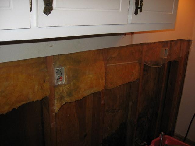 Unintended kitchen remodel-img_3385.jpg