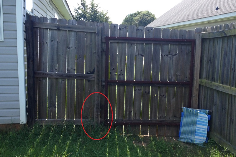 Help with wood fence gate replacement-img_3525.jpg