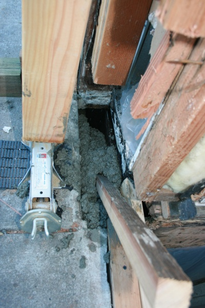 Dry rot project-img_3566.jpg