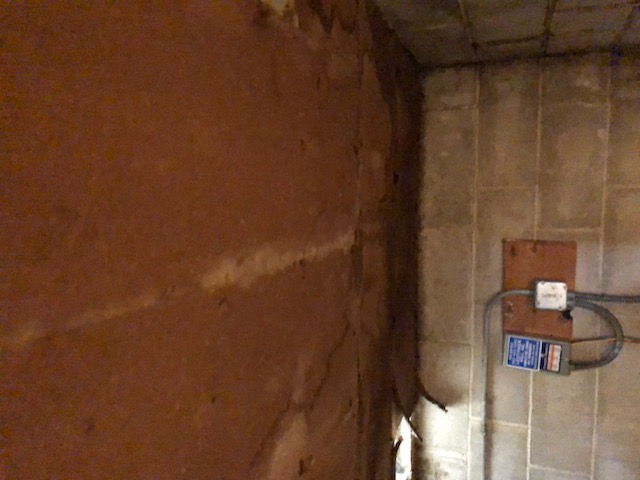 Should I insulate Ceiling in Well Room-img_3587.jpg